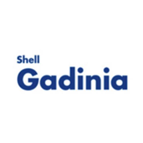 Shell Gadinia: huiles pour moteurs fixes de production d'électricité