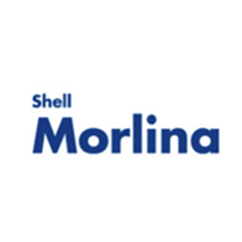 Shell Morlina: huiles pour paliers